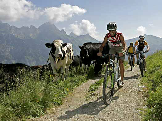 Mountain Biking in Tyrol